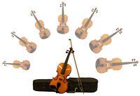 Sinfonie24 4/4 Geige Violine Kinder Schüler Anfänger Geigenbauer Basic I
