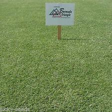 Pennington Triangle Bermuda Grass Seed - 2 Lbs. (Covers 1,000 sq. ft.)