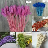 Natural Plants Simulation Dried Flowers Bouquets Home Art Decoration Living Room