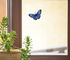 """CLR:WND - Butterfly D1- See-Through Vinyl Window Decal ©YYDC (SMALL 3.5""""w x2""""h)"""