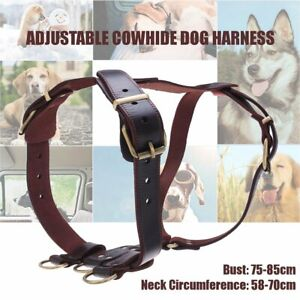 Genuine Leather Pet Dog Harnesses Heavy Duty Pet Vest for Medium Large Dogs