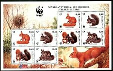 640 - SLOVENIA 2007 - Animals - WWF - Red Squirrel - MNH Mini Sheet