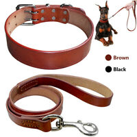 Brown Genuine Leather Dog Collar and Leash Set Small to Large Dogs Walking Lead