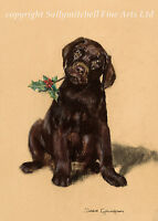 Chocolate Labrador Puppy Christmas cards pack of 10. C341x