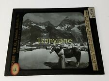 Glass Magic Lantern Slide Mjr Mt Sir Donald King Selkirks Mt Abbott Woman Horse