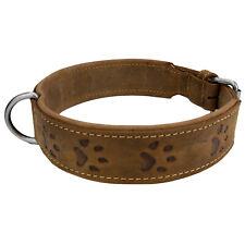 Greenburry Vintage 1609-25 Leder Hundehalsband