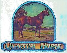 Original Quarter Horse Iron On Transfer Glitter