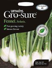 Unwins Pictorial Packet - Vegetable - Fennel Solaris F1 - 40 Seeds