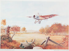 "US Air Force albree scout no. 116 Pigeon-Fraser PRINT 17x23"" vintage airplane"