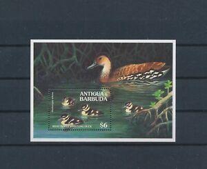 LO55692 Antigua & Barbuda West Indian ducks birds sheet MNH