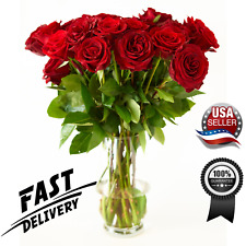 Fresh Red Roses Flower Bouquet 12 Red Roses Long Stem-Luxury & Fresh Roses - Usa