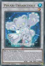 Yu-Gi-Oh! Polari Ursartique : UR ANGU-FR033