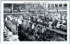 SAN JOSE, California CA   Interior  FRUIT PACKING Workers    Postcard