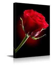 "Canvas Prints - Closeup of Red Rose Flower Against Black Background - 12"" x 18"""