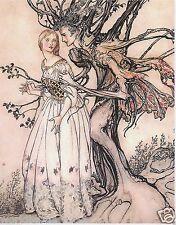 Arthur RACKHAM Fratelli Grimm vecchia in Legno Fairytale stampa montata