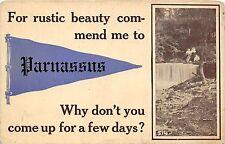 B87/ Parnassus Pennsylvania Pa Pennant Postcard Rustic Beauty Commend Me