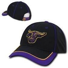 Minnesota State Mankato Mavericks Jersey Mesh NCAA Baseball Snapback Cap Hat