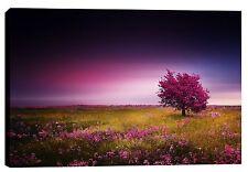 """Epic Graffiti """"Pink Nights"""" by Bess Hamiti, Giclee Canvas Wall Art, 26"""" x 40"""""""
