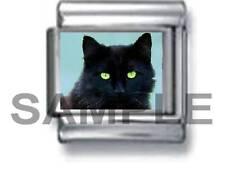 LUCKY BLACK CAT w GREEN EYES 9MM ITALIAN PHOTO CHARM LINK kitty kitten pet