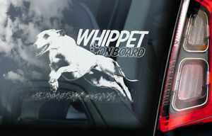 WHIPPET ON BOARD  Car Sticker, Whippet Snap Dog Window Bumper Decal Sign - V02
