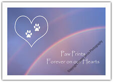 Pet Sympathy Card Dog Cat Condolences Sorry Loss Rainbow Bridge Paw Prints