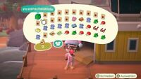 Animal Crossing New Horizons - Turkey Day - Items - Update 1.6.0