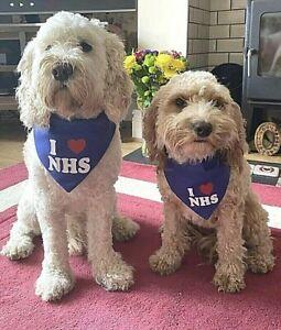 I love (heart) NHS Dog Bandana, Small, Medium, Large