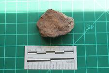 Meteorite G1-0926 - 23.95g IMPRESSIVE MATERIAL! WOW- BEAUTIFUL!!