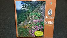 "Mount Hood National Forest, OR 1000 piece 21"" x 27"" puzzle 1999 MB Big Ben"