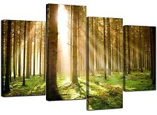 Extra Large Green Trees Canvas Wall Art Pictures 130cm Prints Set 4042 Size 130