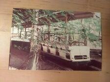 Medina OH CHIPPEWA LAKE PARK 1925 roller coaster ruins 1990 photos GHOST PARK