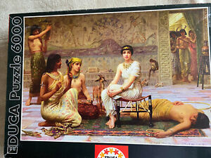 """Educa  5000 PIECE JIGSAW PUZZLE COMPLETE, Pre Owned. """"Loves Labours Lost"""""""
