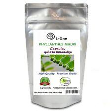 500 Caps PHYLLANTHUS AMARUS NIRURI Capsules  Herb Organic Pure Organic Thailand