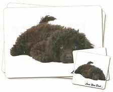 Miniature Poodle 'Love You Dad' Twin 2x Placemats+2x Coasters Set in G, DAD-87PC