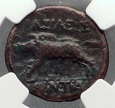 AKRAGAS in SICILY Phintias RARE R2 Authentic Ancient Greek Coin BOAR NGC i60228