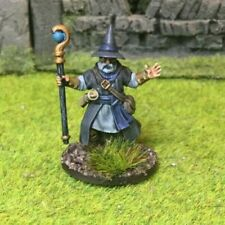 A Beautifully Painted Wizard / Mage - Frostgrave or D&D RPG #3