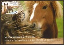 CYPRUS 2012 HORSES ISSUE-HORSE RACING-MAN'S BEST FRIEND MAXIMUM CARD