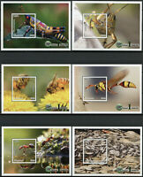 Malawi 2018 MNH Insects Ants Bees Wasps Grasshoppers 6x 1v S/S Stamps