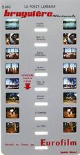 Stereocarte Bruguière n°2405 - La Forêt Landaise  - 8 Vues - Eurofilm