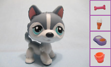 Littlest Pet Shop Dog Puppy Husky Blue No Number and Free Accessory Authentic