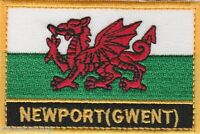 Newport (Gwent) Wales Cymru Town & City Embroidered Sew on Patch Badge