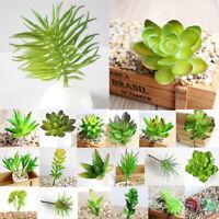 1PC Succulents Simulation Mini DIY Plastic Office Decor Garden Home Delicate BC
