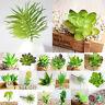 1PC Succulents Simulation Mini DIY Plastic Office Decor Garden Home Delicate Ntb