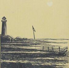 1870's-80's Alex W. Green's Furniture & Upholstering Lighthouse Scene Flag P67