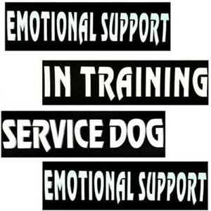 A Pair Patch Label Reflective Patches Service Dog In Training for Dog Harness