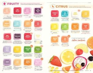 SCENTSY Wax Bar BBMB for wax warmers PICK YOUR FAV Scent Bring back my bar *NEW!