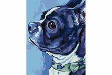 PAINTING BY NUMBERS KIT BOSTON TERRIER T16130067
