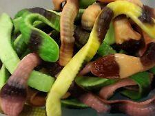 Gummy Garden Snakes Gummies Candy Candies 5 Pounds