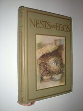 NESTS & EGGS. BLAIKIE. circa 1920. SHOWN SERIES. ILLUSTRATED. IN VGC