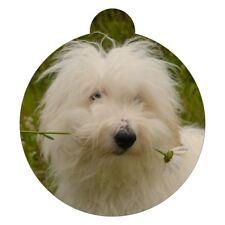 Coton de Tulear Dog Breed Picture Pet ID tag